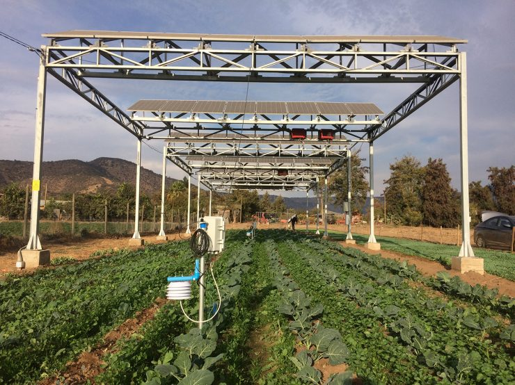 Agrophotovoltaik in Chile